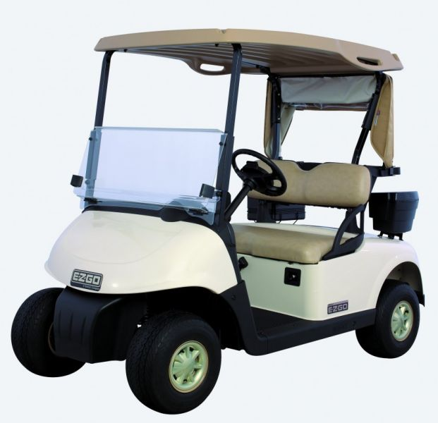 ezgo rxv made in the years 2008 - current will look like the golf cart  pictured above